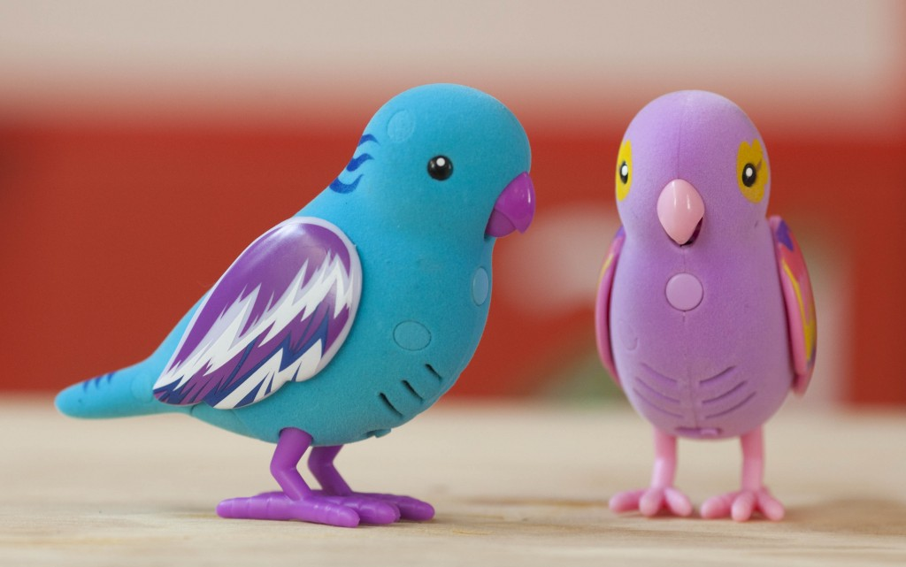 Little Live Pets Birds from Argos