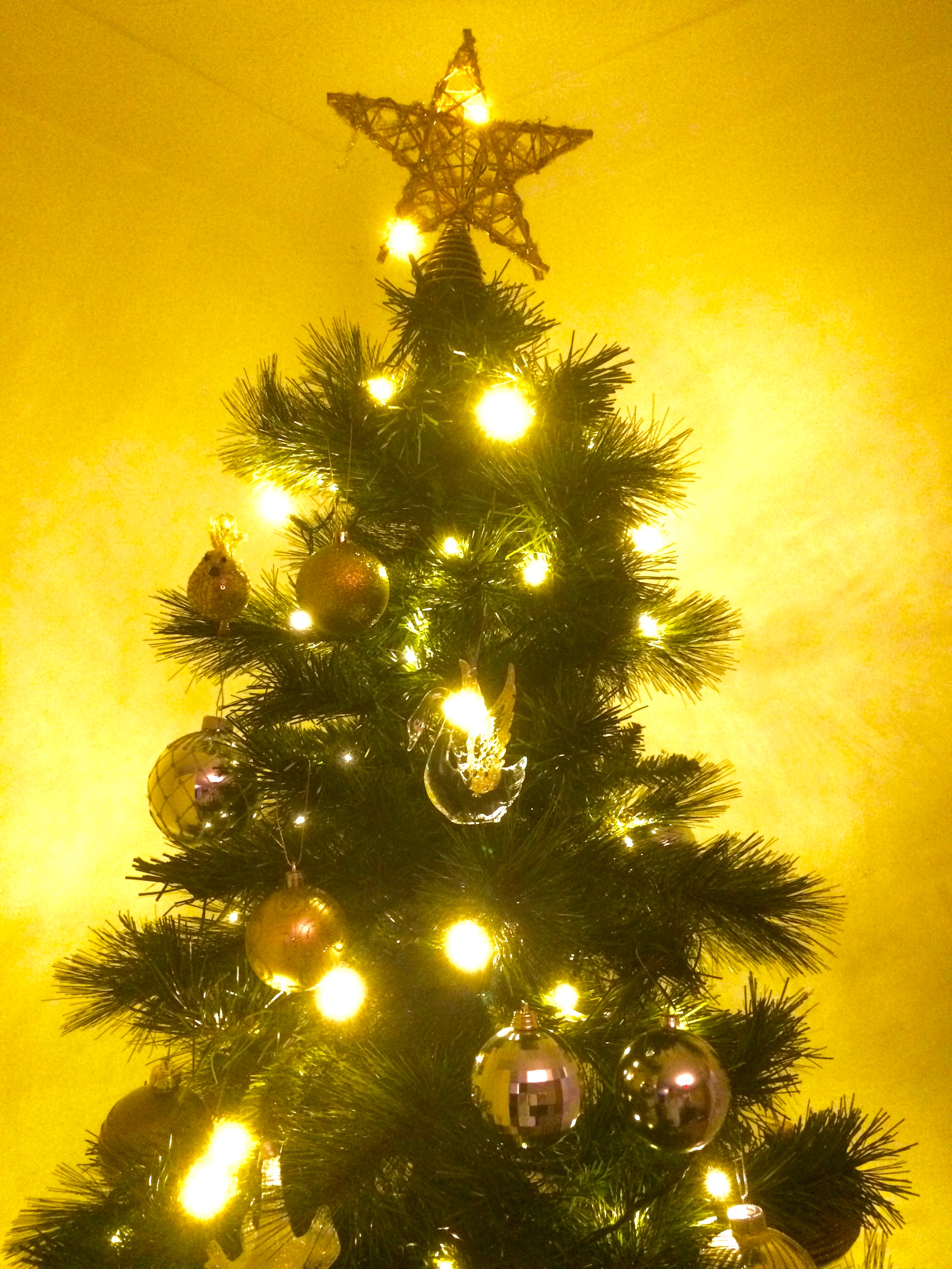 My Christmas Tree Light Recommendation…. Diy Christmas Decorations Pasta. Christmas Decorations Large. Christmas Decorations And Craft Ideas. Target White Christmas Decorations. Make Your Own Christmas Decorations John Lewis. Christmas Wreath Decorations Wholesale. Christmas Decoration Hire Scotland. Outdoor Christmas Decorations Meijer