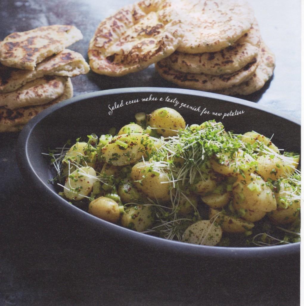 Waitrose-Christmas-harvest-cookbook-2015- 44