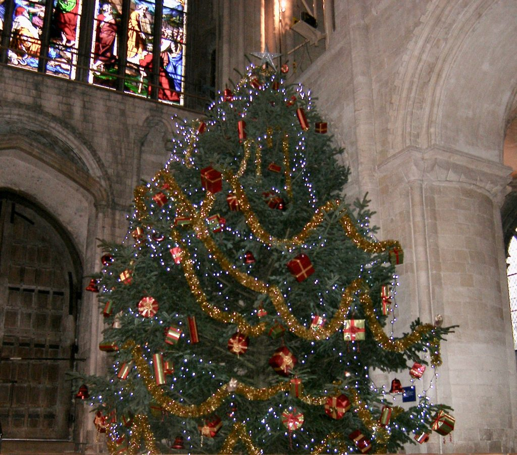 The wonderful Christmas tree in Norwich Cathedral.